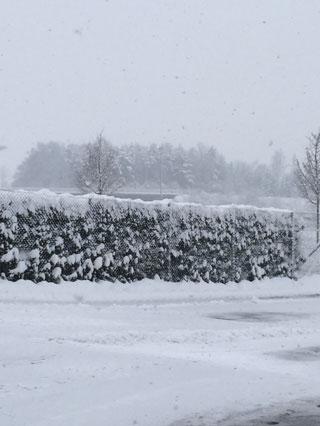 Kar Manzaraları galerisi resim 1