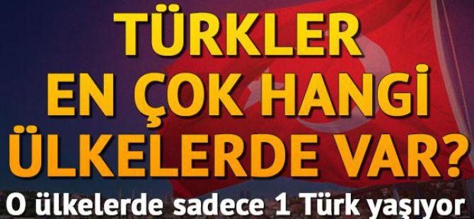 Türkler en çok hangi ülkelerde var?