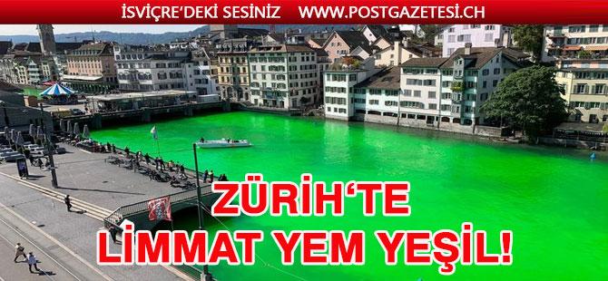 Zürih'te çevre kirliliğine dikkat çekmek için Limmat'ı  boyadılar