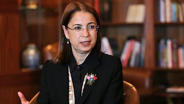 'Yurt dışındaki Türkler için temsilcilikler açılacak'