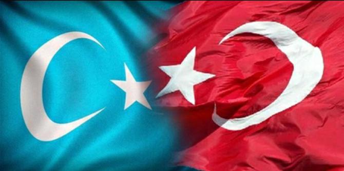 Doğu Türkistan'daki vahşet İsviçre'de Protesto edilecek