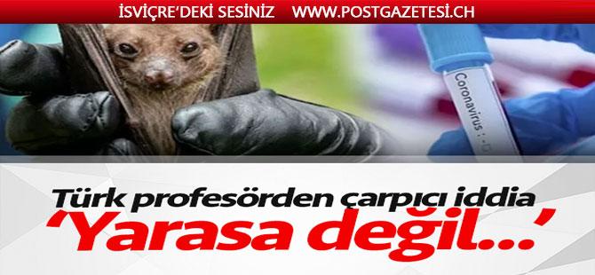 Türk profesörden çarpıcı iddia: Yarasa değil domuz!