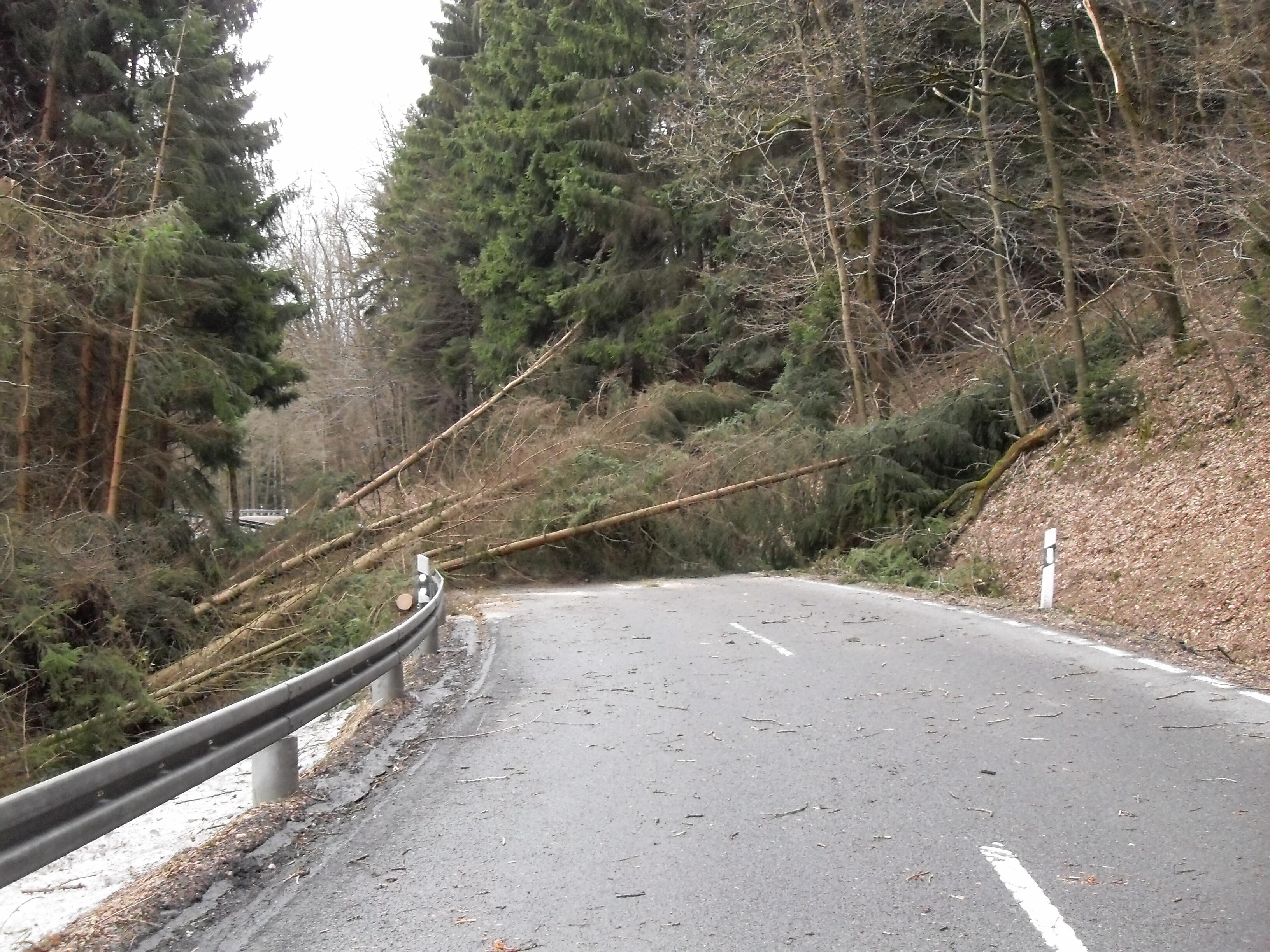 Avrupa'da Fırtına Felaketi: 13 Ölü!