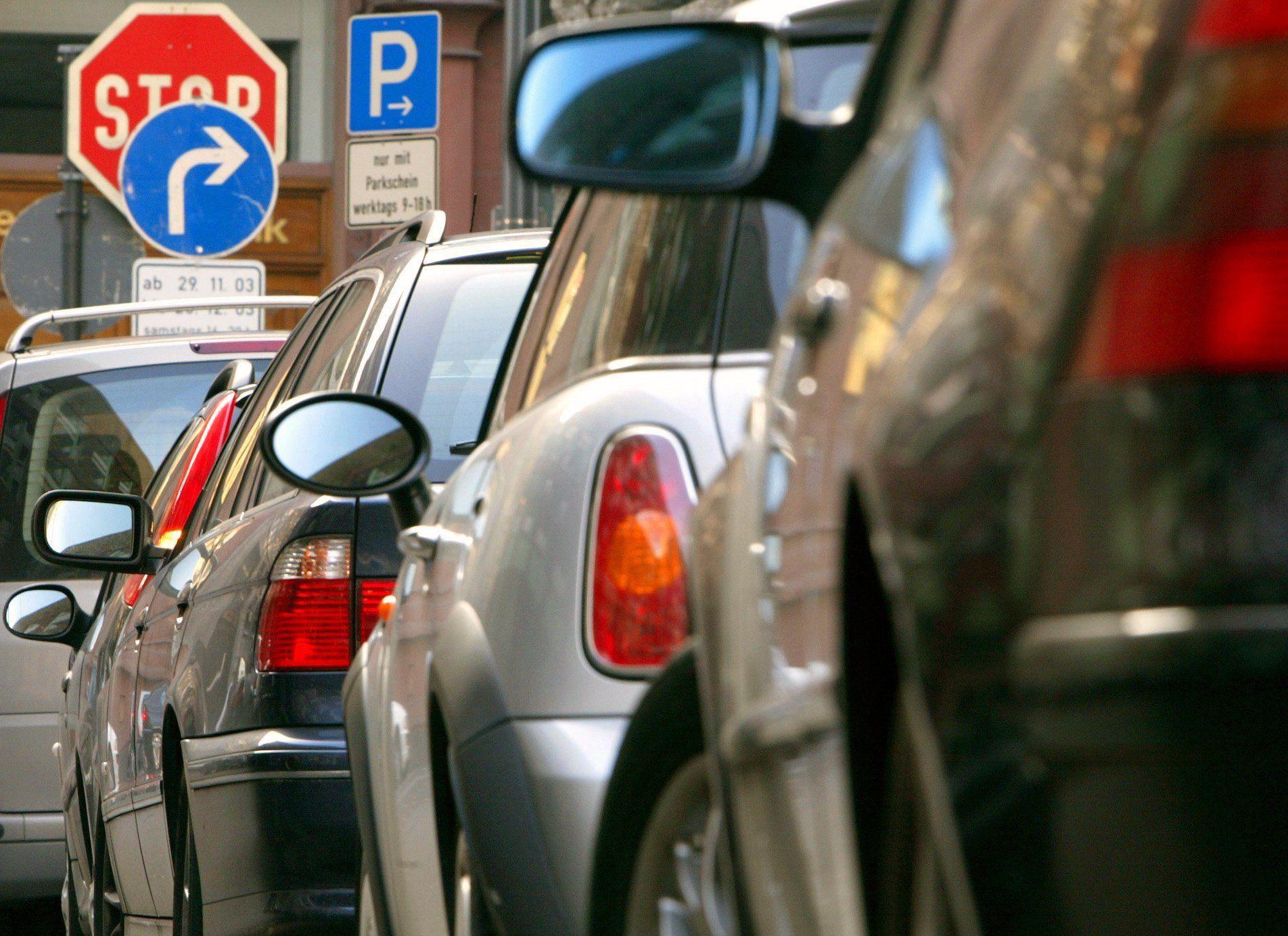 Zürih'te park cep yakıyor