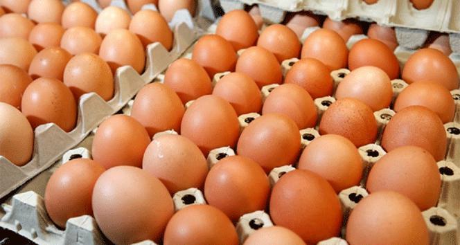 Yumurta yemek için akıllı nedenler