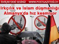 Almanya'da ırkçılık ve İslam düşmanlığı artıyor!