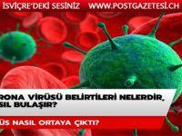 Corona virüsü belirtileri nelerdir? Corona virüsü nasıl bulaşır? Corona virüsü nasıl ortaya çıktı?