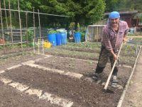Vatan hasretini hobi bahçelerinde gideriliyor
