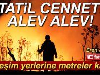 Bodrum'da alevler yerleşim yerlerine yaklaştı