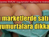 Yumurtalarda yine zehirli bakteri alarmı