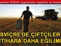 İsviçre'de çiftçiler intihara daha eğilimli