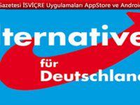 AfD, İsviçreli bağışçıların ismini Federal Meclis'e verdi