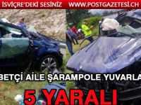 Gurbetçi aile şarampole yuvarlandı: 5 yaralı